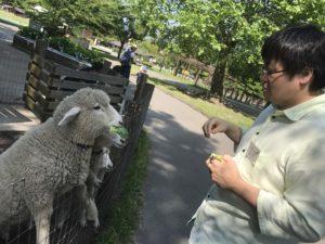 IMG_8299(羊が切れないように使用すること)